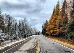 Enlace a El invierno aún no ha cruzado la calle
