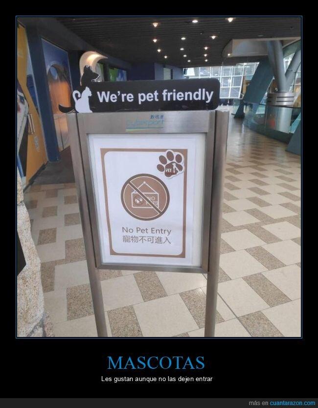 cartel,mascotas,prohibición