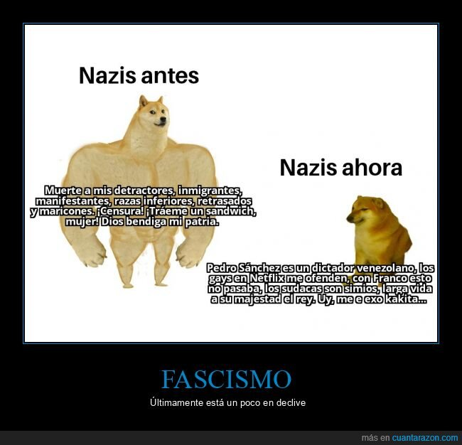 derecha,fascismo,nazi,política