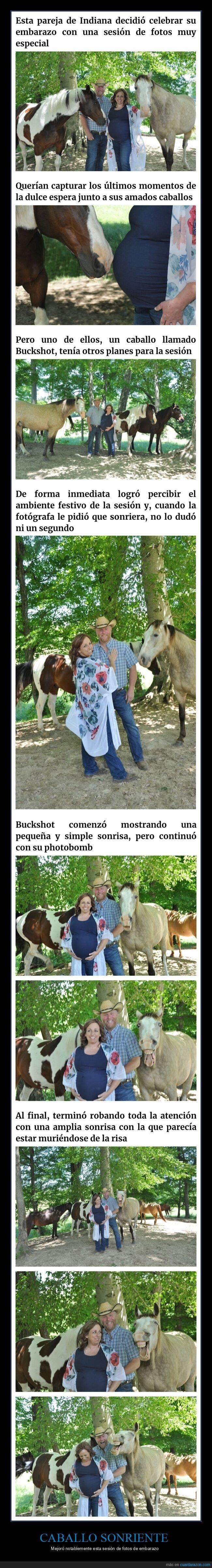 caballo,embarazo,sesión de fotos,sonrisa