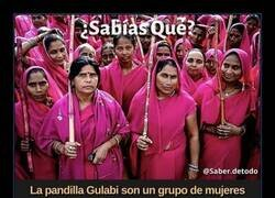 Enlace a Cuidado con la Pandilla Gualabi