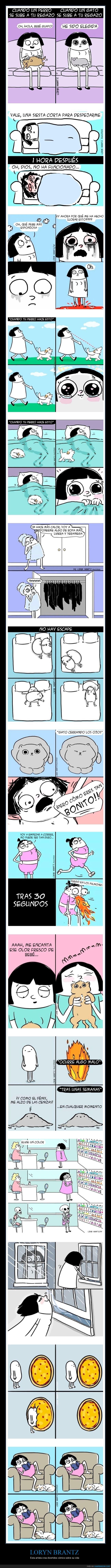 cómics,loryn brantz
