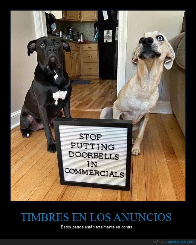 anuncios,perros,timbres