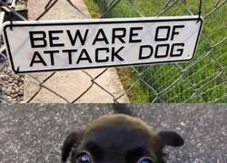 Enlace a Ataque mortífero