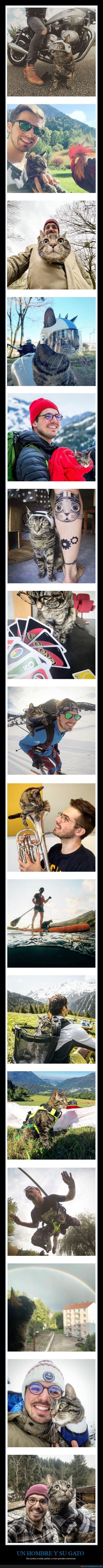aventuras,gato,viajes