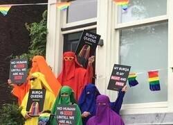 Enlace a Burkas coloridos