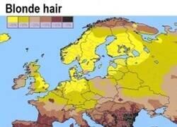 Enlace a Porcentaje de rubios, ojos azules, ojos verdes y pelirrojos en Europa