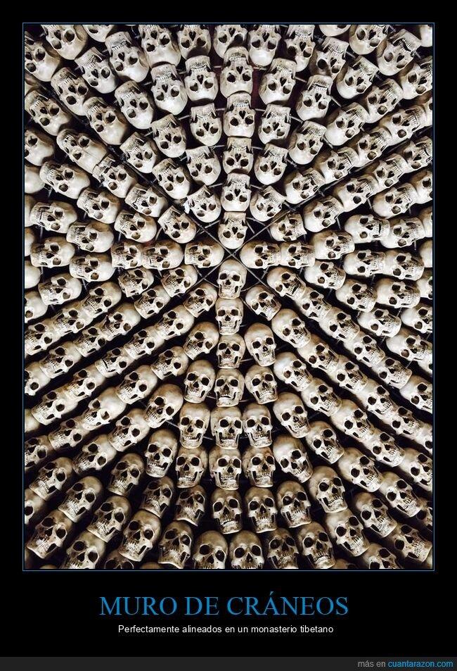 alineados,cráneos,monasterio tibetano,muro