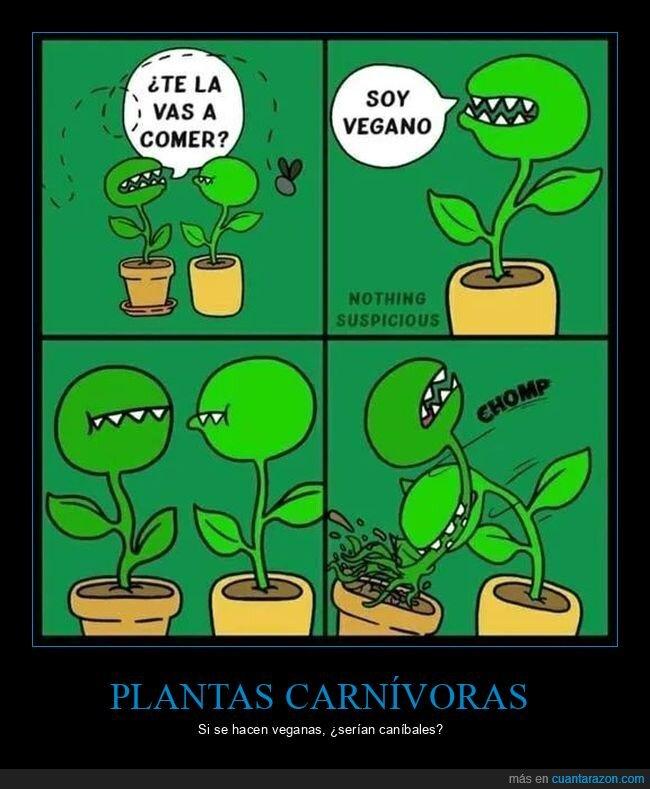 comer,planta carnívora,vegano