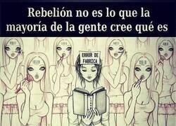 Enlace a La auténtica rebelión