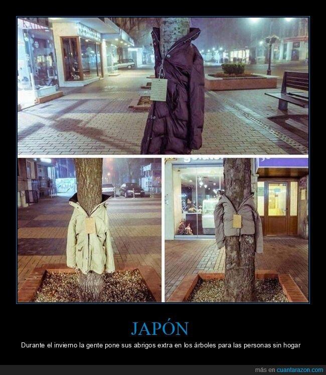 abrigos,árboles,invierno,japón