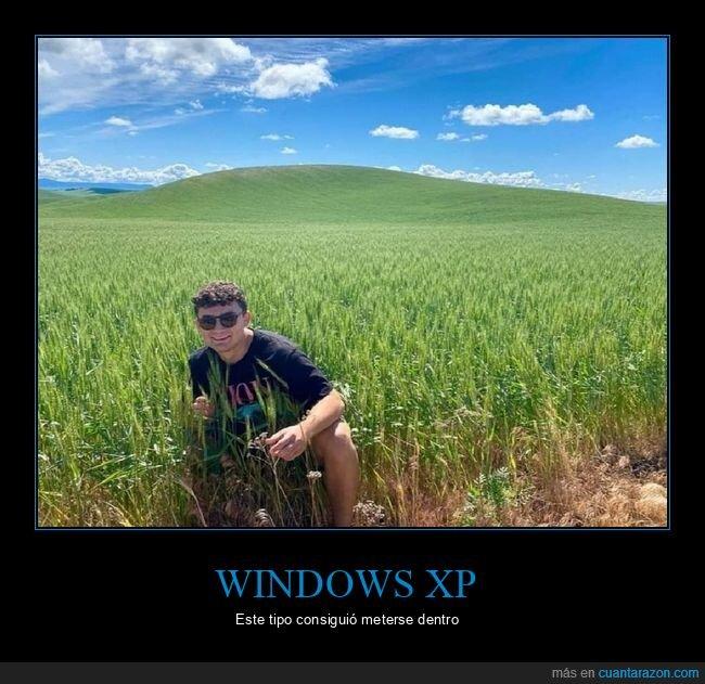 fondo de pantalla,windows xp