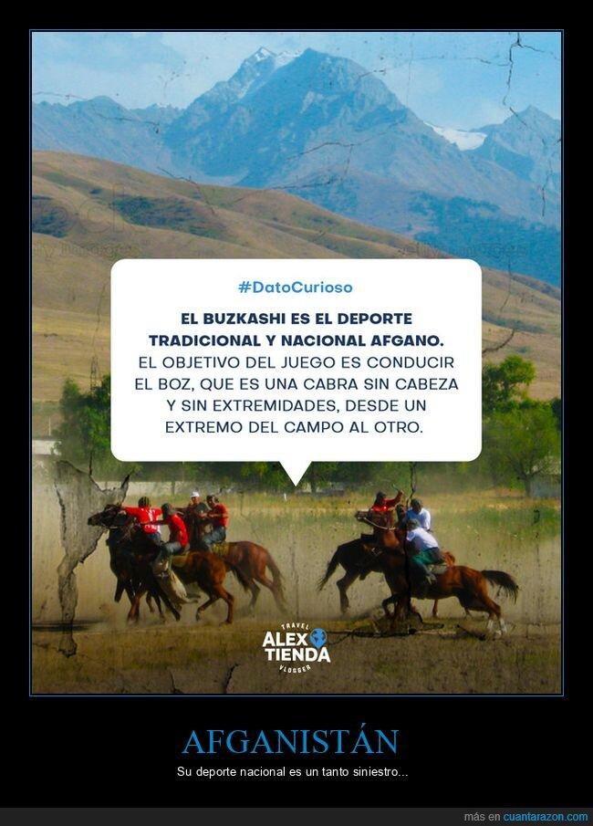 afganistán,buzkashi,cabra,deporte