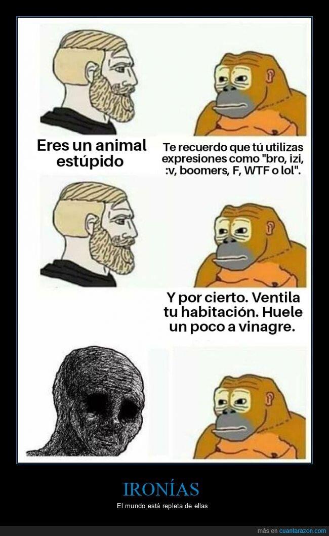 animal,expresiones,mono