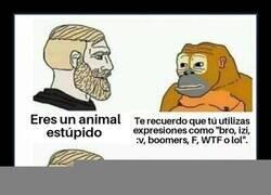 Enlace a Maldito mono...