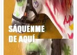 Enlace a Un curso de verano enseña a los niños a pintar sobre caballos y se desata la polémica