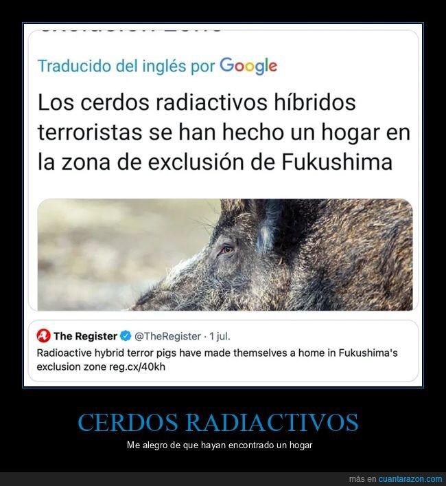 cerdos,fukushima,híbridos,radiactivos,wtf