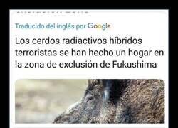 Enlace a Todo ha acabado bien para los cerdos radiactivos terroristas