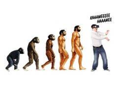 Enlace a Ya no se puede evolucionar más