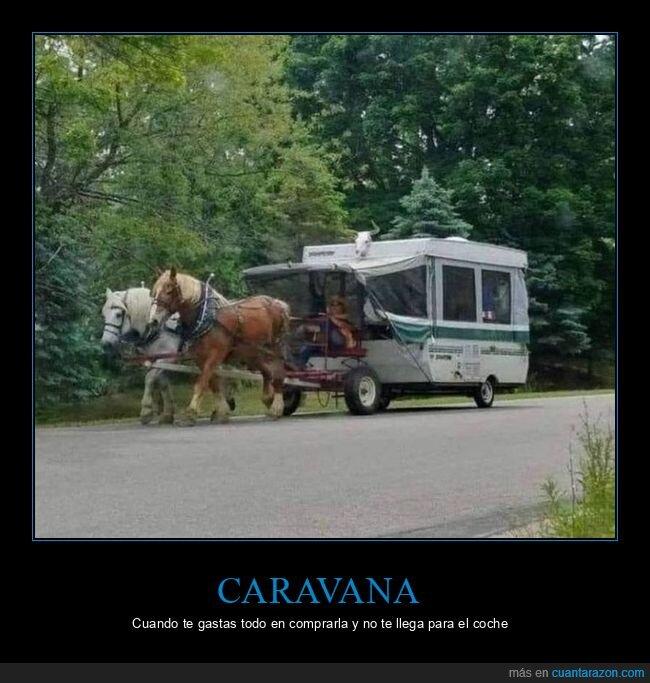 caravana,cavallos,wtf