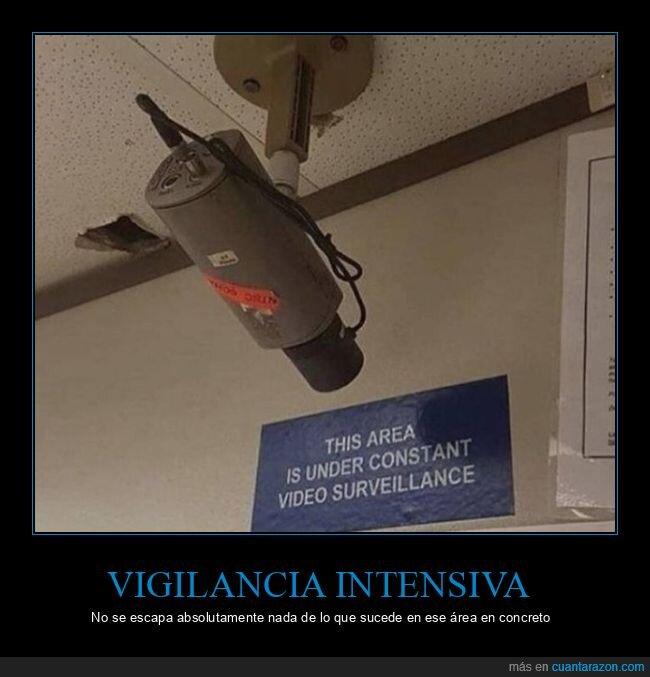 cámara,carteles,seguridad,vigilancia