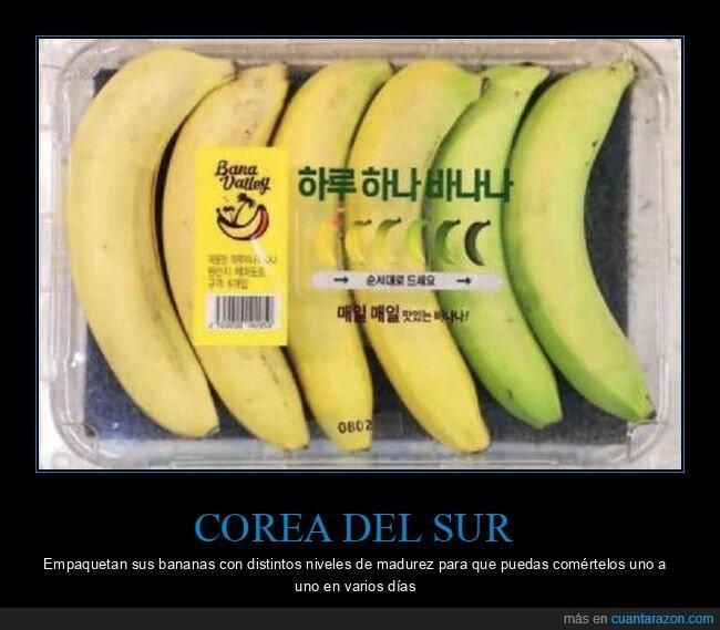 bananas,corea del sur,plátano