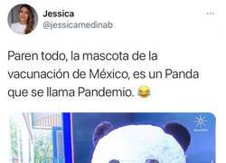 Enlace a Todos adoran a Pandemio