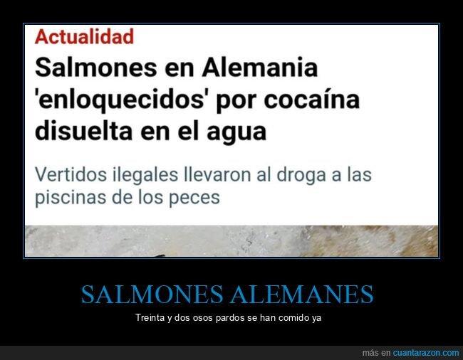 alemania,coca,salmones,wtf