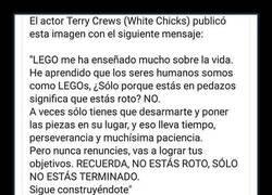 Enlace a Lo que Lego enseñó a Terry Crews