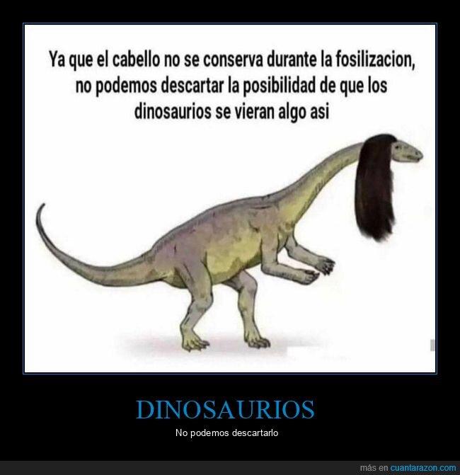 dinosaurios,pelo