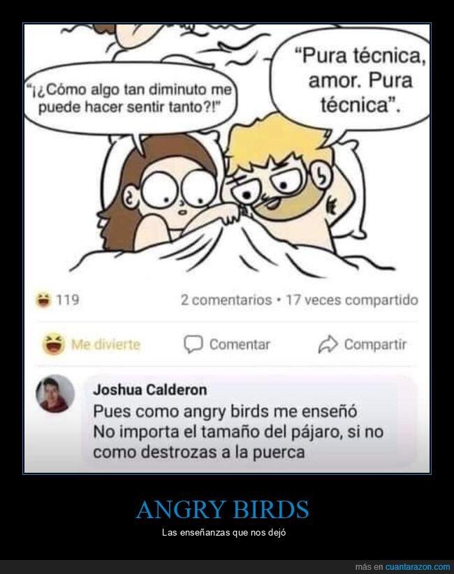 angry birds,pájaro,sentir,tamaño,técnica