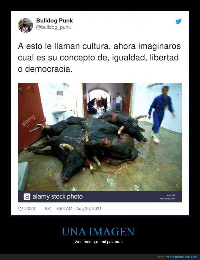 derecha,tauromaquia,torero,toros