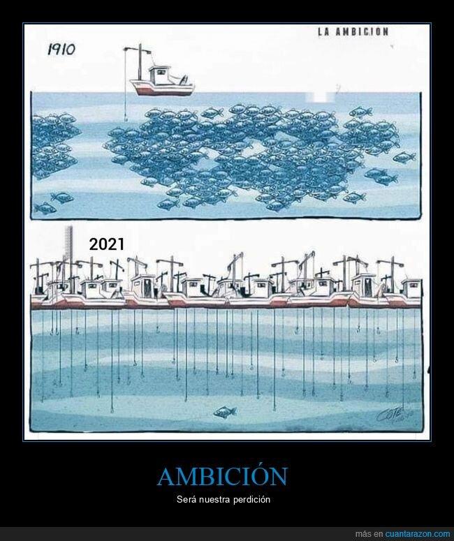 ahora,antes,barcos,peces