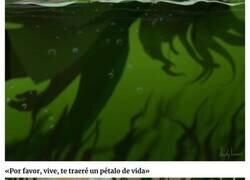 Enlace a La historia de la sirena verde que despertará tus sentimientos