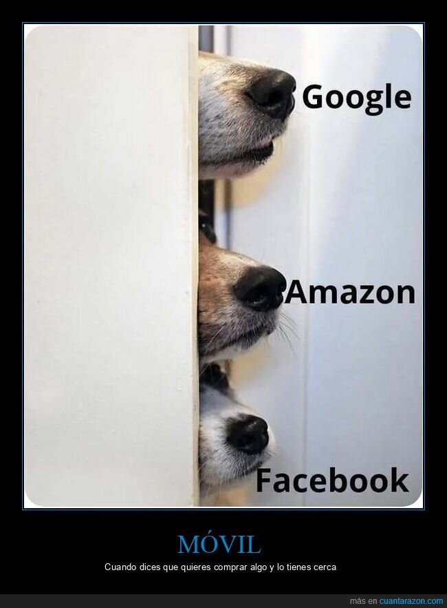 amazon,comprar,facebook,google,morros,móvil,perros