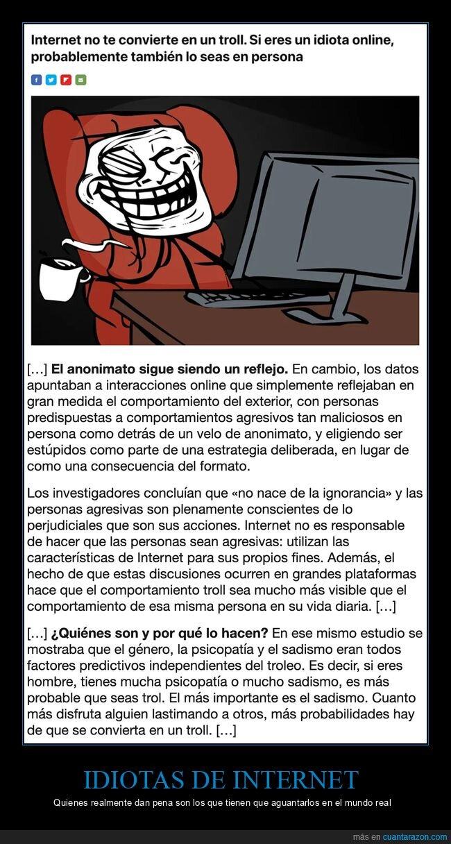 idiota,internet,mundo real,troll