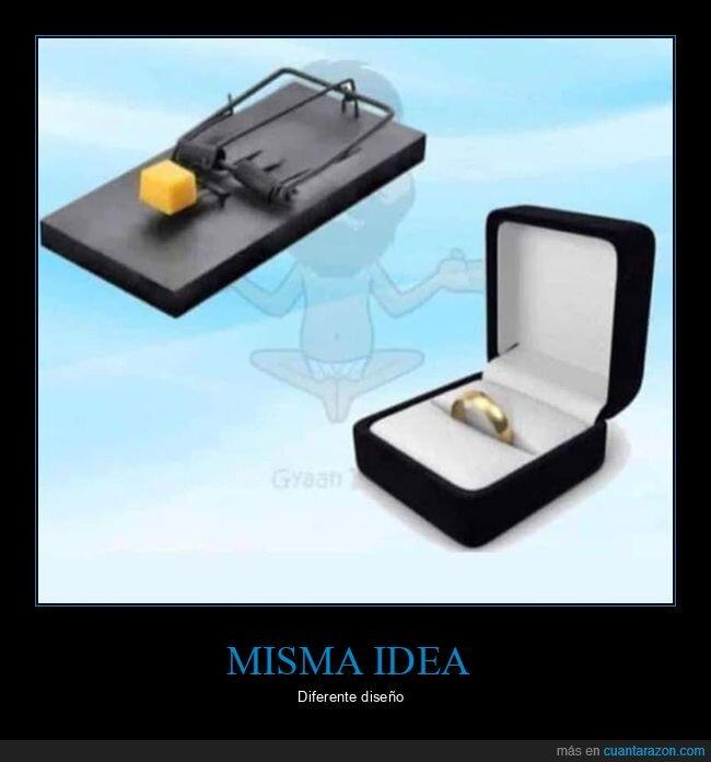 anillo,cepo,idea,trampa