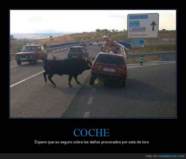coche,toro,wtf