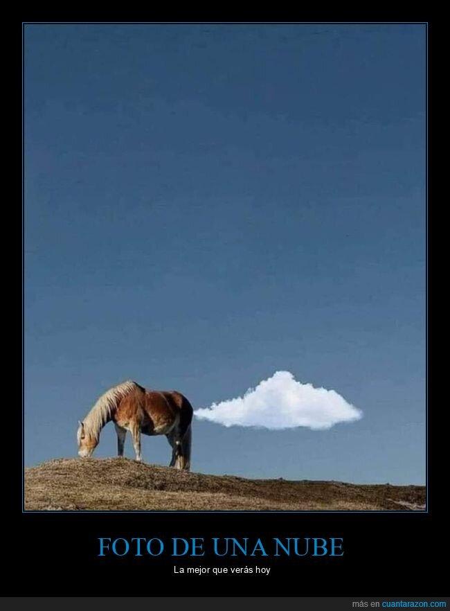 caballo,foto,nube