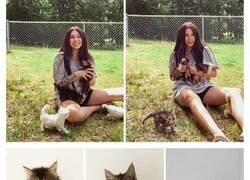 Enlace a Esta mujer embarazada encontró una gata también preñada, la acogió y dieron a luz al mismo tiempo