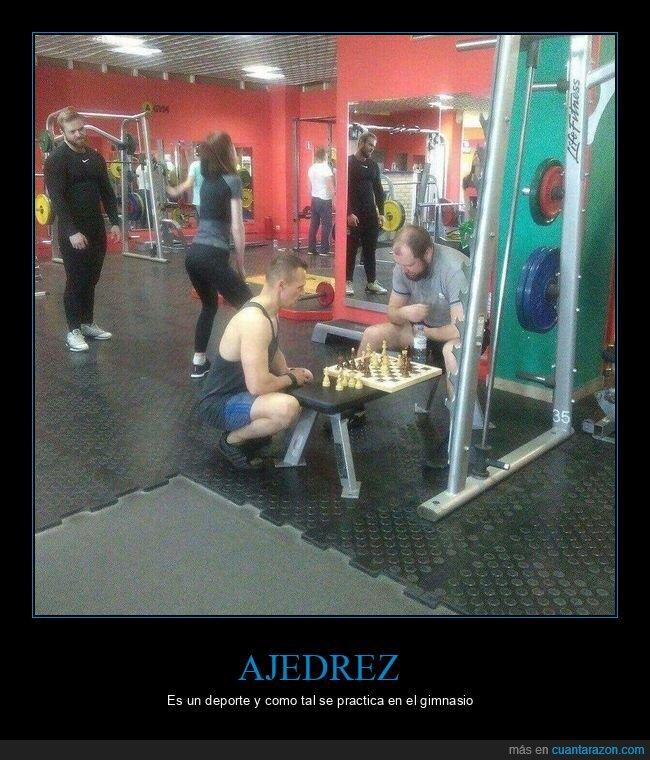 ajedrez,gimnasio,wtf