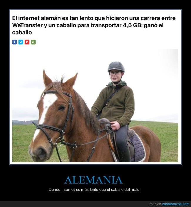 alemania,caballo,internet,lento