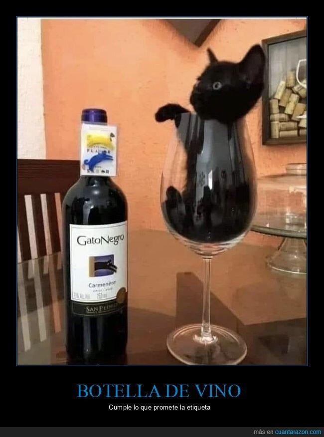 botella,copa,gato negro,vino