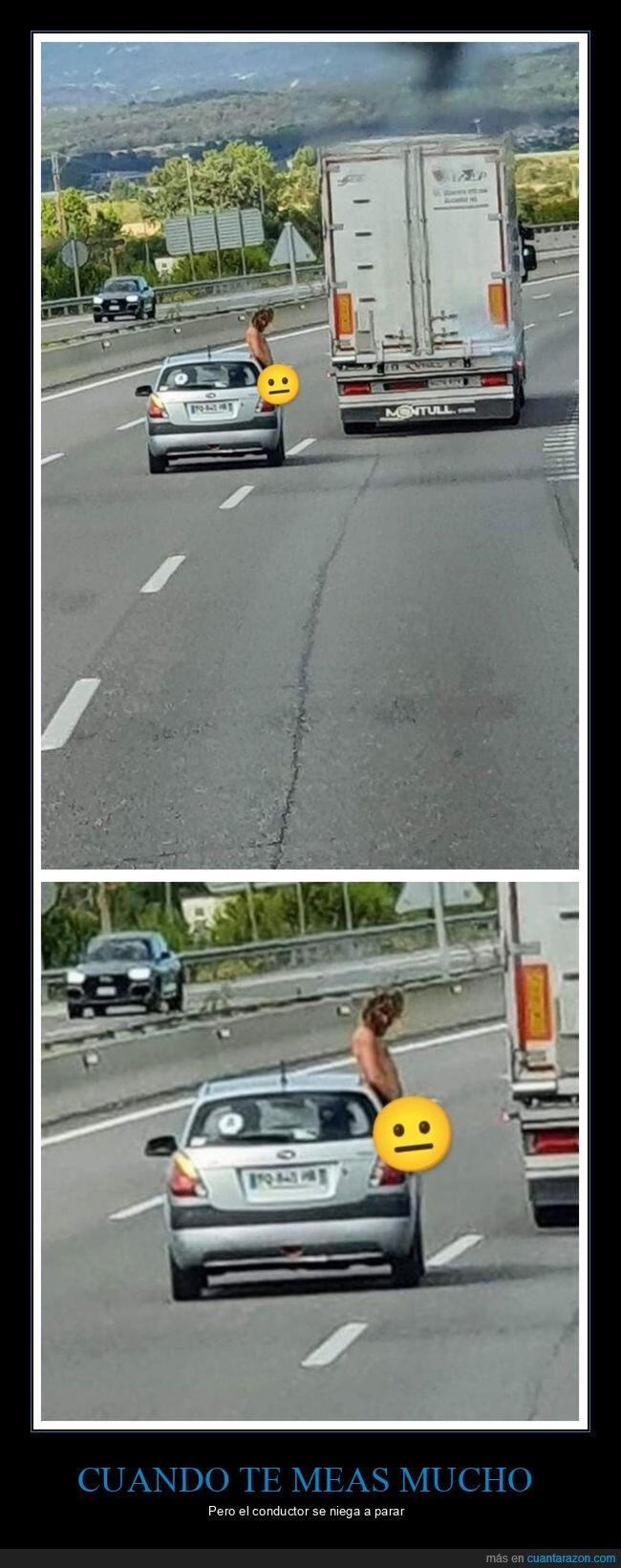 coche,meando,wtf