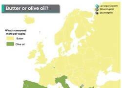 Enlace a Lo que realmente divide a Europa