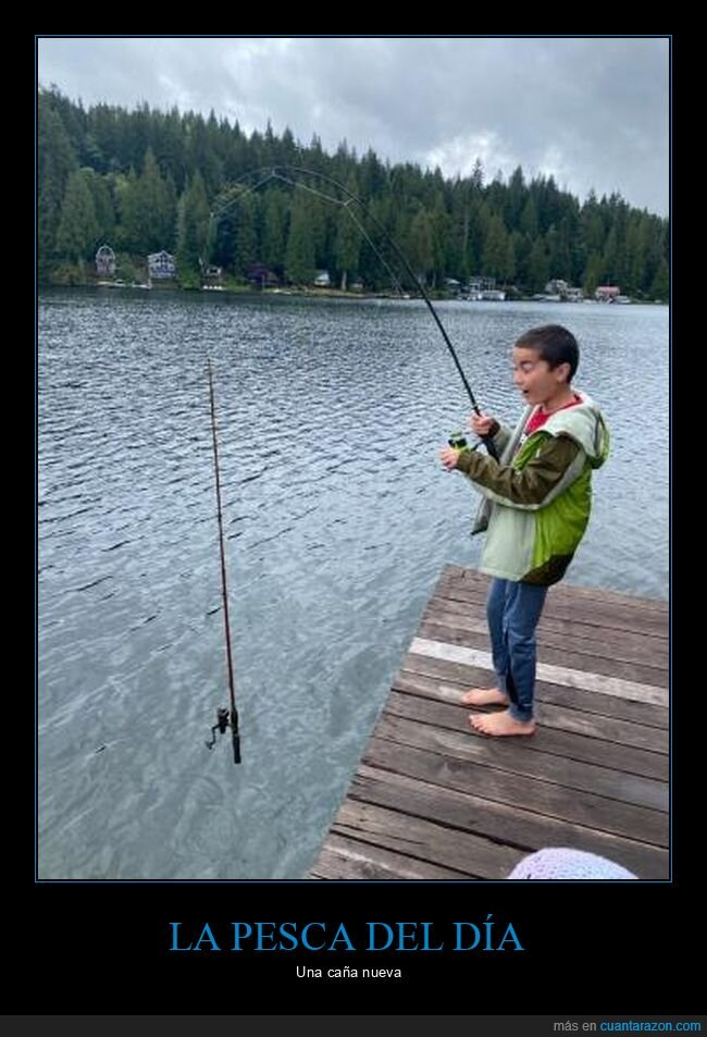 caña,pesca,wtf