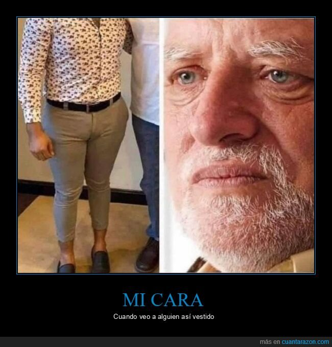 cara,hide the pain harold,ropa