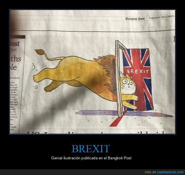 brexit,gato,león