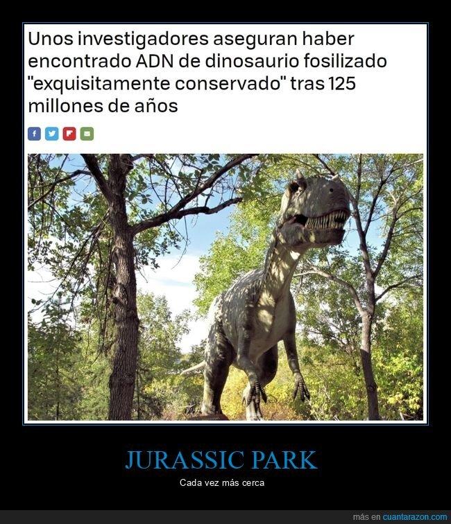 adn,conservado,dinosaurio