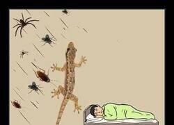 Enlace a Te cuidan mientras duermes